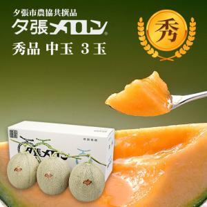 夕張メロン 共選 秀品中玉(約1.3kg) 3玉(代引不可)|hokkaidogb