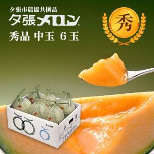 夕張メロン 共選 秀品中玉(約1.3kg) 6玉1箱(代引不可)|hokkaidogb