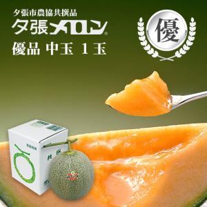 夕張メロン 共選 優品中玉(約1.3kg) 1玉(代引不可)|hokkaidogb