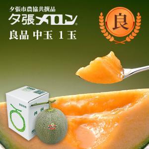 夕張メロン 共選 良品中玉(約1.3kg) 1玉(代引不可)|hokkaidogb