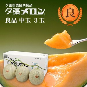 夕張メロン 共選 良品中玉(約1.3kg) 3玉(代引不可)|hokkaidogb