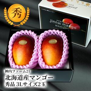 ハロウィン 北海道産 神内マンゴー 3Lサイズ 秀品 2玉 アップルマンゴー アーウィン種 送料無料 お中元ギフト 着日指定可 のし対応 お取り寄せ|hokkaidogb