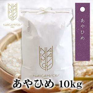 ハロウィン 30年度産 北海道米あやひめ 10kg 北海道 お土産|hokkaidogb