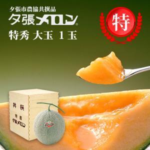 夕張メロン 共選 特秀大玉(約1.6kg) 木箱詰 1玉(代引不可)(着日指定不可)|hokkaidogb