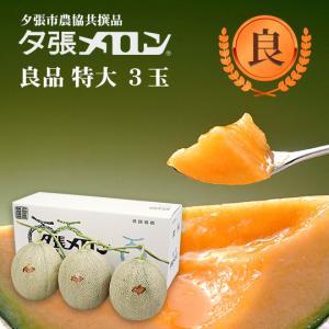 ハロウィン 夕張メロン 共選 良品特大(約2.0kg) 3玉(代引不可)|hokkaidogb