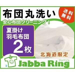 【送料無料】安心布団クリーニング!夏掛け羽毛布団の丸洗い2枚<北海道限定>|hokkaidosentakubin