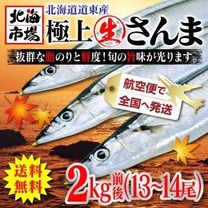 【送料無料】北海道 生さんま 2kg 13~14尾 【航空便でお届け】【秋刀魚】【9月中旬より順次発送】|hokkaiichibasapporo