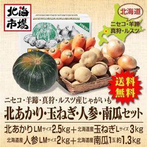 【送料無料】北海道ニセコ・羊蹄産じゃがいも 北あかり・玉ねぎ・南瓜・人参セット-6|hokkaiichibasapporo