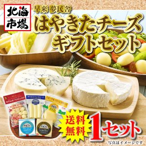 【送料無料】はやきたチーズギフトセット|hokkaiichibasapporo