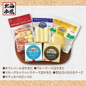 【送料無料】はやきたチーズギフトセット hokkaiichibasapporo 03