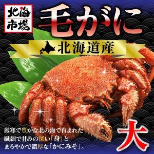 北海道産 毛がに (570g前後)|hokkaiichibasapporo