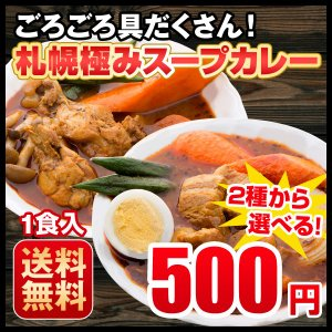 送料無料 スープカレー 3種から選べる 札幌極みスープカレー 1食 豚角煮・チキン・ホタテ 北海道 カレー レトルト 500円ポッキリ