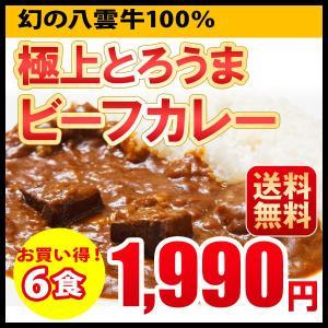 お買い得! ビーフカレー レトルトカレー 6食セット 北海道 札幌  送料無料|hokkaimaru