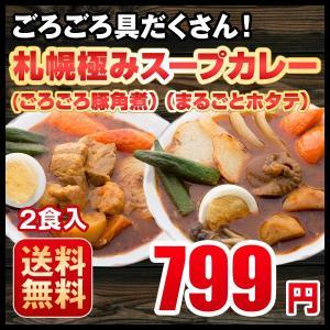 期間限定 札幌極みスープカレー 2食入 とろとろ豚角煮・まるごとホタテ 北海道 カレー レトルト 最安値に挑戦