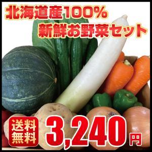 北海道産100%新鮮お野菜セット