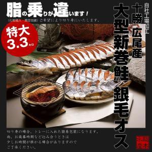 【送料無料】北海道十勝 広尾産 大型 新巻鮭 銀毛オス1本物(化粧箱入・真空包装)3.3kg前後|hokkeya