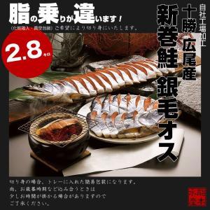 【送料無料】北海道十勝 広尾産 新巻鮭 銀毛オス1本物(化粧箱入・真空包装)2.8kg前後|hokkeya