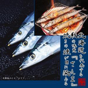 北海道産 開きさんま 大サイズ 9枚|hokkeya|02