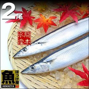 北海道産 大型一汐サンマ(頭付き 丸ごと1尾)2尾入り 真空個包装|hokkeya