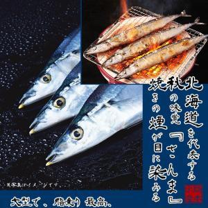 北海道産 大型一汐サンマ(頭付き 丸ごと1尾)2尾入り 真空個包装|hokkeya|02