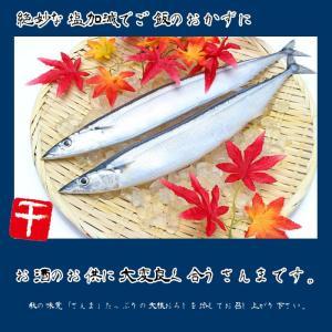 北海道産 大型一汐サンマ(頭付き 丸ごと1尾)2尾入り 真空個包装|hokkeya|03