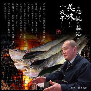 北海道産 丸干しこまい 一夜干し 12尾 (4尾×3串)|hokkeya|02