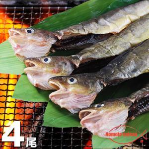 北海道産 丸干しこまい 一夜干し 1串(3尾〜5尾)|hokkeya