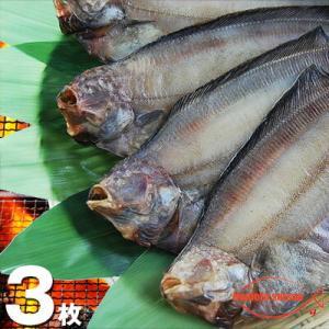 北海道(根室産)なめたがれい 一夜干し 大サイズ 3枚|hokkeya