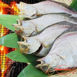 北海道(広尾産)宗八がれい 一夜干し 大サイズ 1枚|hokkeya