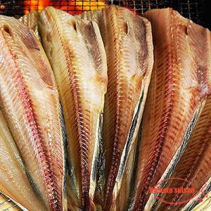 しまほっけ 漁醤干し 大サイズ 1枚|hokkeya