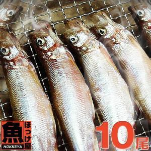 北海道(広尾産)ししゃもメス 超特大サイズ 10尾 【本ししゃも】|hokkeya