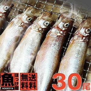 【送料無料】北海道(広尾産)ししゃも メス特大サイズ20尾(1尾20g〜22g) オス特大10尾(1尾20g以上)の合計30尾セット【本ししゃも】|hokkeya