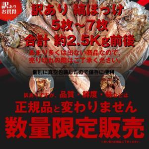送料無料 脂のり最高 訳あり 縞ほっけ 5枚〜7枚 合計約2.5Kg前後 /干物/ホッケ/|hokkeya|02