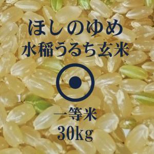 令和元年産 ほしのゆめ 30kg 玄米 一等米 北海道米 当麻産籾貯蔵米
