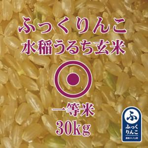 令和元年産 ふっくりんこ 30kg 玄米 一等米 産地サミット認証品 北海道産