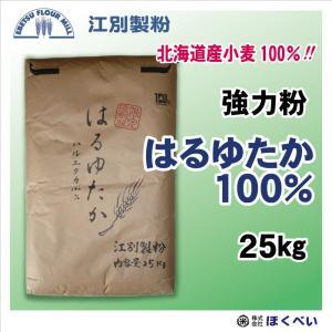 江別製粉 はるゆたか100 強力粉 25kg 【送料無料】【北海道産】【業務用】