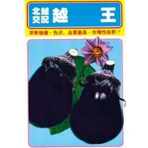 野菜の種 茄子 越王 20ml|hokuetsunoji-shop