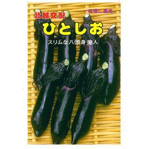 野菜の種 茄子 ひとしお 1.2ml|hokuetsunoji-shop