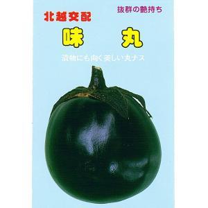 野菜の種 茄子 味丸 1.2ml|hokuetsunoji-shop