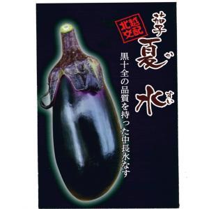 野菜の種 茄子 夏水 20ml|hokuetsunoji-shop