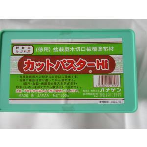 癒合剤 ニューカット パスターHi松柏用 ハナゲン 500g|hokuetsunoji-shop