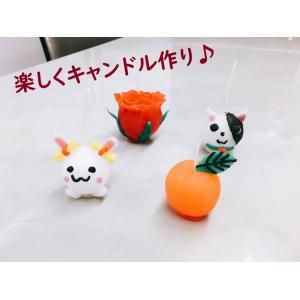 ボールキャンドルキッド(バラ売り)|hokulea