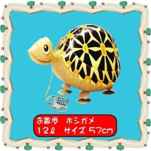 お散歩風船 ホシガメ|hokulea