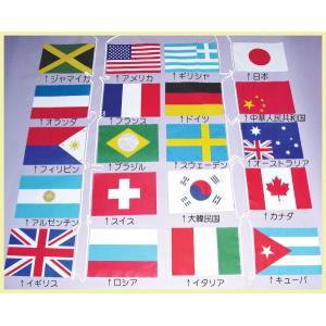 ビニール万国旗 20ヶ国10m |hokulea