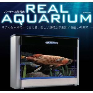 バーチャル熱帯魚 リアルアクエリアム|hokulea