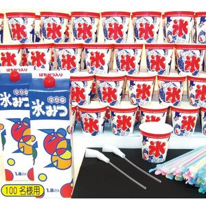 かき氷材料セット100名様用|hokulea