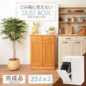 ゴミ箱 木製 ダストボックス 2分別 25L 引き出し収納 〔ペール容器2個付/フタ無/キャスター付き〕 完成品|hokuo-lukit