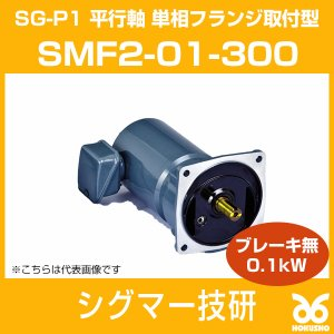 SMF2-01-300 SG-P1 ギヤモーター 平行軸 単相フランジ取付型 (ブレーキ無) 0.1kW シグマー技研|hokusho-shouji