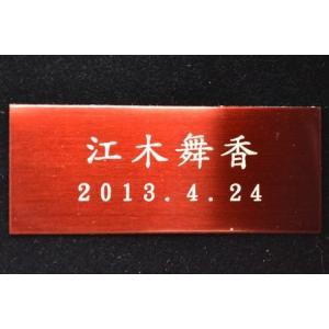 赤ちゃん筆 【送料無料】 (誕生記念筆・胎毛筆) 絆コース アクセサリー軸 / 熊野筆|hokutoen|03