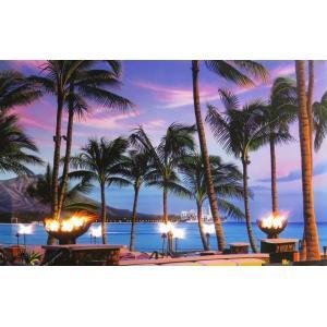 ハワイのイラストでお馴染みの栗山義勝氏のシリーズです♪  スイッチ ON/OFFで普通のパネル絵にも...